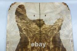 5A Bookmatch Bird's-eye Golden Camphor Wood Burl LUTHIER MASTER GUITAR TOP SET