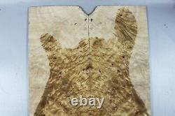 5A Golden Camphor Wood Burl Bookmatch Guitar Top Set Luthier supply