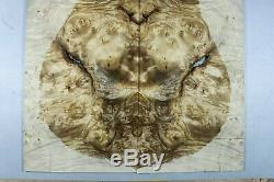 Birds-eye Barky Golden Camphor Wood Burl LUTHIER MASTER GUITAR TOP SET