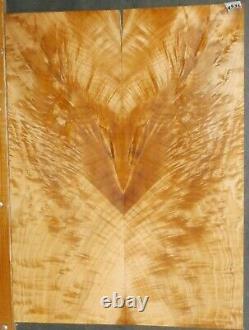 Flame Figured Maple Wood 9536 Luthier 5A FIRE BIRD Guitar Top Set 24 x 18 x. 500