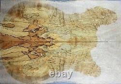 Spalted Maple Wood les paul Guitar Bookmatch Drop Top Set Luthier #7542-1