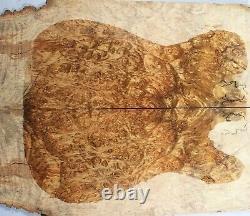 7726-1 5a Spalted Golden Camphor Wood Burl Les Paul Guitar Drop Top Set Luthier