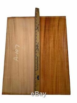 Acajou Dreadnought Brésilien Dos Et Set Side Aaaa Luthier Tonewood