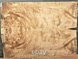 Figured Birdeye Maple Burl Wood 9594 Luthier Guitar Top Set 24x17x. 500