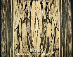 Guitare Luthier Tonewood Black & Blite Pale Moon Ebony Acoustique Dos Côtés Set