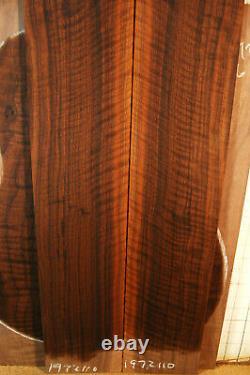 Très Vieux Violoneux Noir Noyer Tonewood Guitare Luthier Mis En Arrière Côtés Des Années 1960
